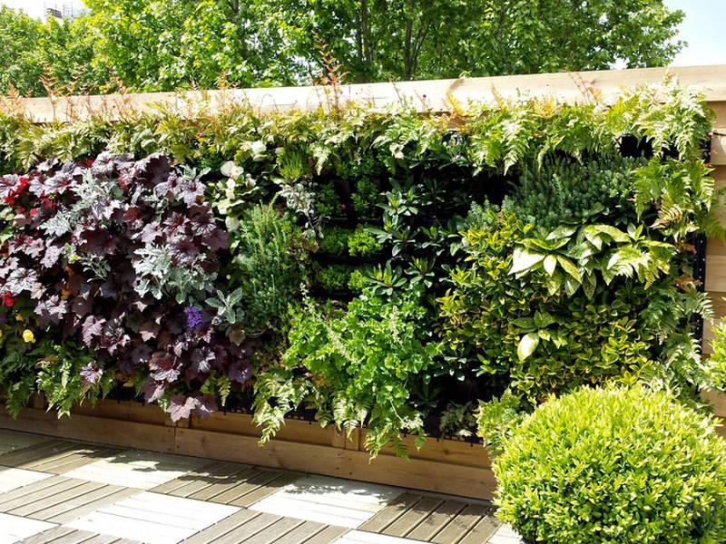 Quels sont les bénéfices d'un Mur végétal?