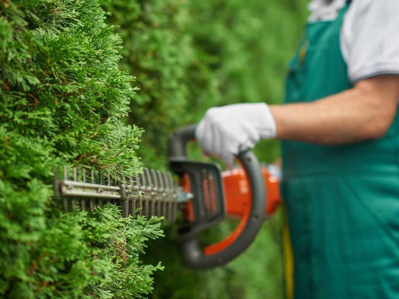 Quels outils choisir pour faciliter l'entretien d'un jardin ?